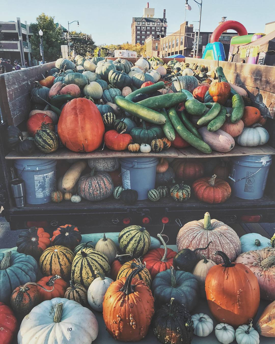 Pumpkin Festival, Giveaway, and Countless Balloons